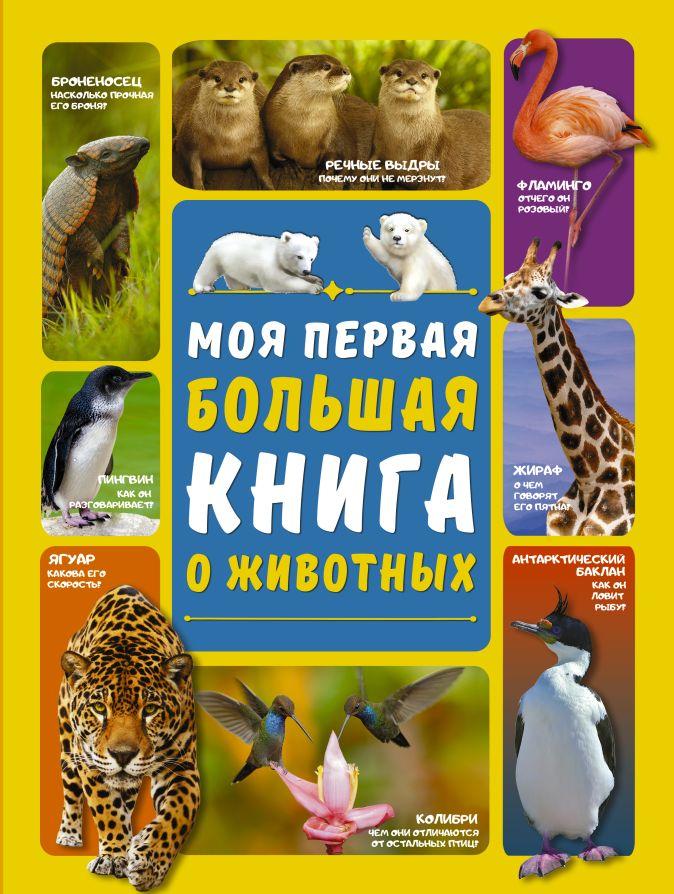 Л. Вайткене , Д. Ермакович - Моя первая большая книга о животных обложка книги