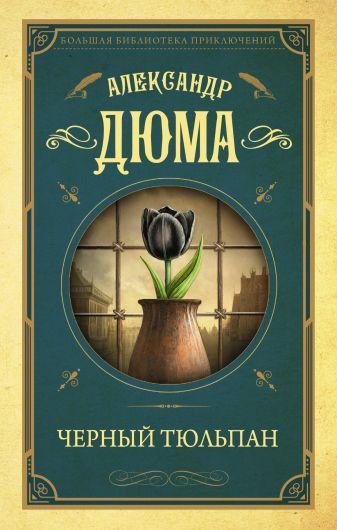 Александр Дюма - Черный тюльпан обложка книги