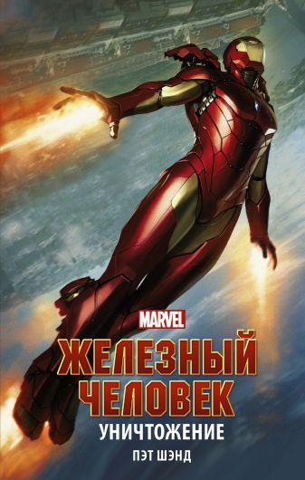 Пэт Шэнд - Железный Человек. Уничтожение обложка книги