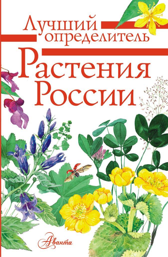 Растения России Дмитриева Т.Н., Пескова И.М., Куксина Н.В.