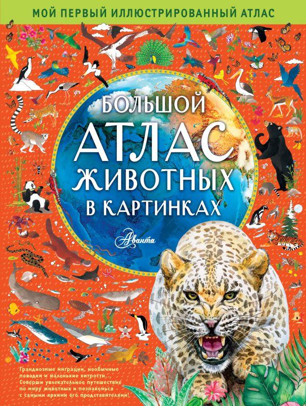 Фото - Хокинс Эмили Большой атлас животных в картинках хокинс эмили уильямс рейчел большой атлас животных в картинках