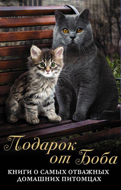 ПОДАРОК ОТ БОБА: Книги о самых отважных домашних питомцах - фото 1