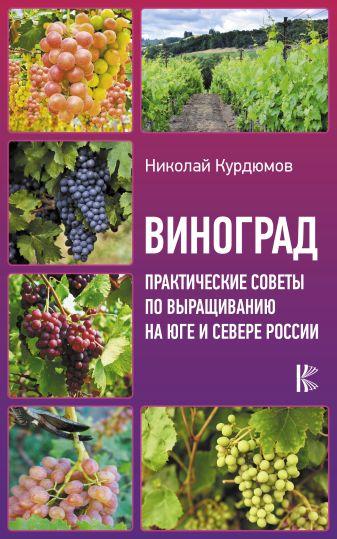 Курдюмов Н.И. - Виноград. Практические советы по выращиванию на юге и севере России обложка книги