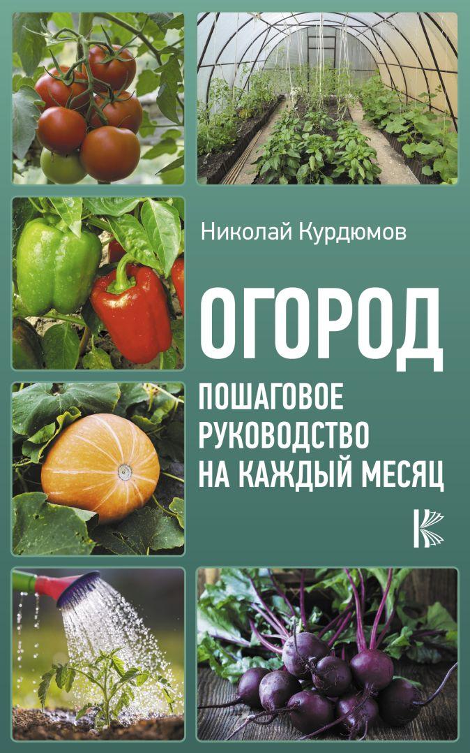 Курдюмов Н.И. - Огород. Пошаговое руководство на каждый месяц обложка книги