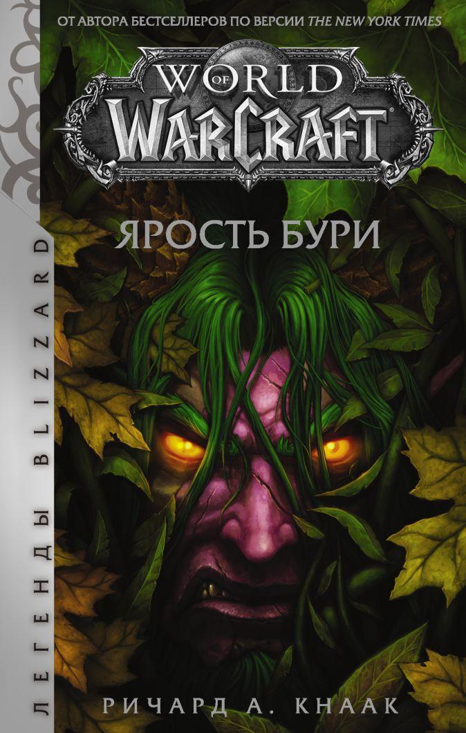 Ричард Кнаак - World of Warcraft: Ярость Бури обложка книги