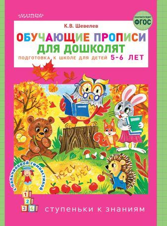 Шевелев К.В. - Обучающие прописи для дошколят обложка книги