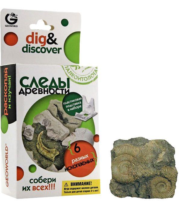 G. Коллекция. Ископаемые в гипсе. Аммониты CL082KR