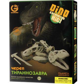 G. Ископаемые в гипсе, набор археолога, Сборная модель  Череп Тираннозавра, коробка с окном ED236KR