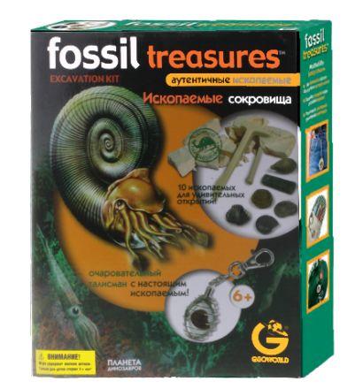 G. Ископаемые в гипсе, набор геолога, Окаменелости, коробка с окном ED 342KR - фото 1