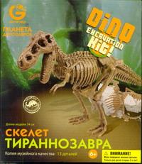 G.Эра Динозавров.  Скелет  Тираннозавра