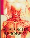 Макарова Е.А. - Анатомия человека' обложка книги