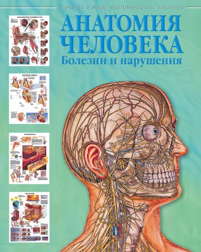 Анатомия человека. Болезни и нарушения - фото 1