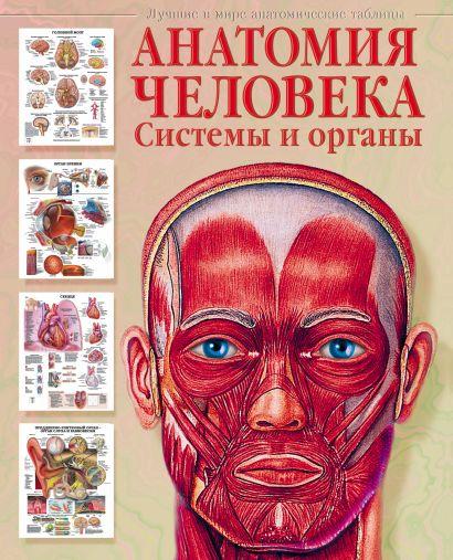 Анатомия человека. Системы и органы - фото 1