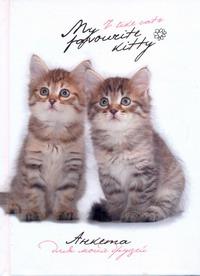 Анкета для моих друзей(коты, белая) Попова Н.