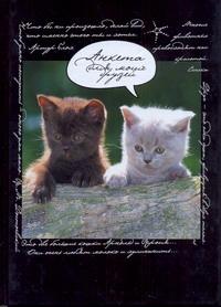 Анкета для моих друзей(коты, черная)