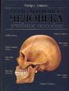 Алкамо Э. - Атлас анатомии человека' обложка книги
