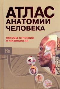 Атлас анатомии человека : основы строения и физиологии = Анатомический атлас Бориса А. И.