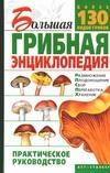 Большая грибная энциклопедия Морозов А.И.