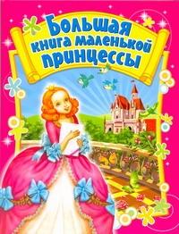Большая книга маленькой принцессы Данкова Р. Е.