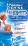 Березина Алина - Большая книга о детях индиго' обложка книги