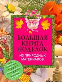 Чебаева С.О. - Большая книга поделок из природных материалов обложка книги