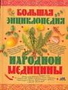 Непокойчицкий Г.А. - Большая энциклопедия народной медицины обложка книги