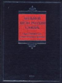 Большой англо-русский словарь