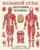 Махиянова Е.Б. - Большой атлас анатомии человека' обложка книги