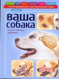 Ваша собака Галанин Г.Г.