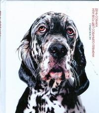День собаки, или Весь цвет собачьего племени - фото 1