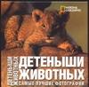 Ильдос А.С. - Детеныши животных' обложка книги