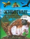 Животные. Новая иллюстрированная детская энциклопедия Канделаки Тина