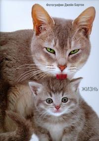 Бартон Дж. Жизнь кошек
