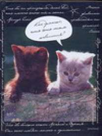 Зап.книжка А6 64л. Зверята-котята-48099