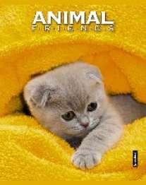 Записная книжка А6 80л.Котенок в желт.полотенце-48197(дут)синяя клетка