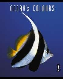 Записная книжка.А6 80л. Океан-48199(дут)синяя клетка