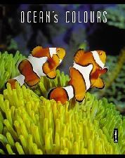 Записная книжка.А6 80л. Океан-48200(дут)синяя клетка