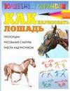 Рымарь Н.Н. - Как нарисовать лошадь' обложка книги