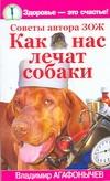 Как нас лечат собаки - фото 1