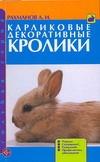 Рахманов А.И. - Карликовые декоративные кролики' обложка книги