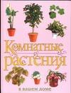 Рычкова Ю.В. - Комнатные растения в вашем доме' обложка книги