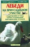 Лебеди на приусадебном участке Бондаренко С.П.