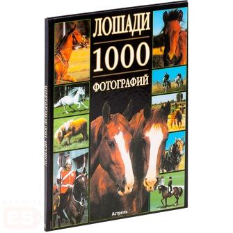 Леклер Бертран Лошади железо для лошадей украина