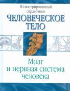 Борисова И. - Мозг и нервная система человека' обложка книги