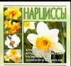 Нарциссы Волкова В.Н.