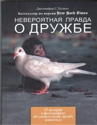 Холанд Дженнифер - Невероятная правда о дружбе обложка книги