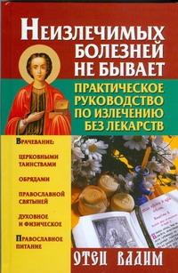 Вадим, отец - Неизлечимых болезней не бывает. Практическое руководство по излечению без лекарс обложка книги