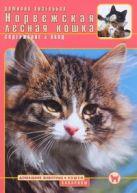 Кизельбах Д. - Норвежская лесная кошка : содержание и уход' обложка книги
