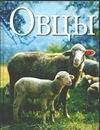 Ридер Х. - Овцы' обложка книги