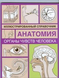 Органы чувств человека Борисова И.